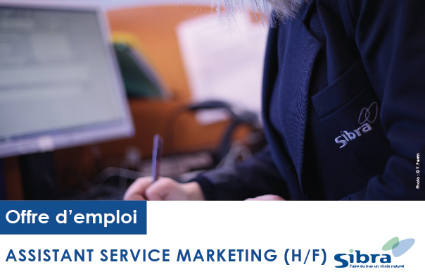 Assistant Service Marketing