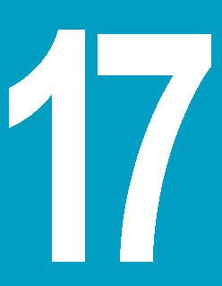 Logo ligne 17