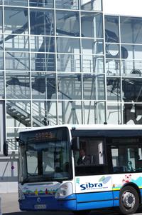 Conducteur au volant d'un bus