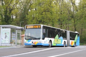Bus sur boulevard urbain